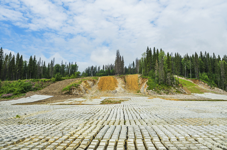 ural: site preparation for the construction of the pipeline in the Urals forest at summer Sunny day