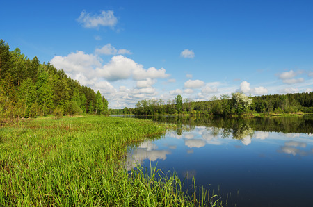 urals: Beautiful summer landscape. Islands on the river Neiva in calm weather. Russia, The Urals Stock Photo