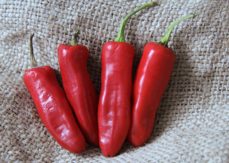 chilli red: Rustic Red Chilli Peppers
