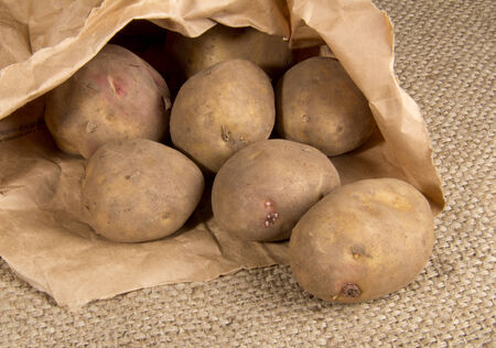 Sack of Organic Potatoes photo
