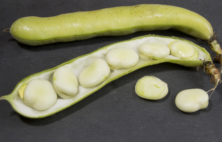 haba: Organic Broad Beans in pod, outside pod and sliced Stock Photo