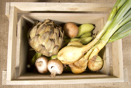 haba: Organic Vegetables in a Wooden Crate