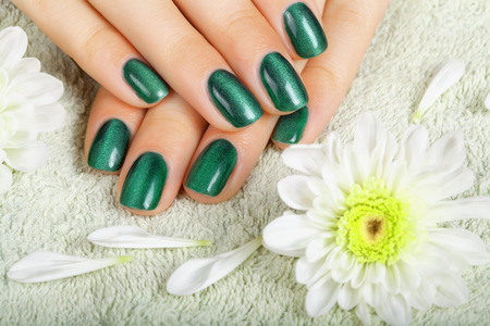 polish: Womens manicure with effect of cats-eye gel polish on the nails. Stock Photo