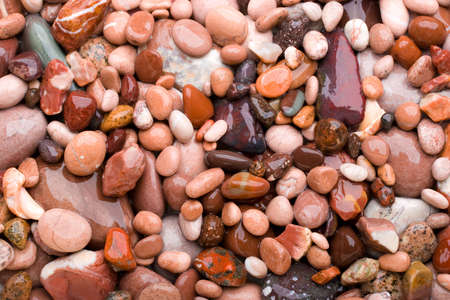Background made of pink pebbles. Stock Photo