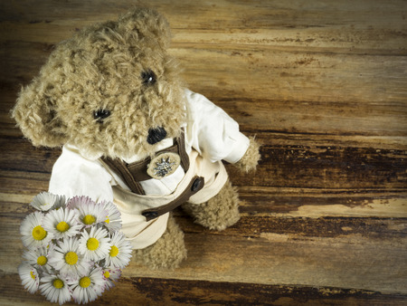 presented: teddy presented flowers Stock Photo