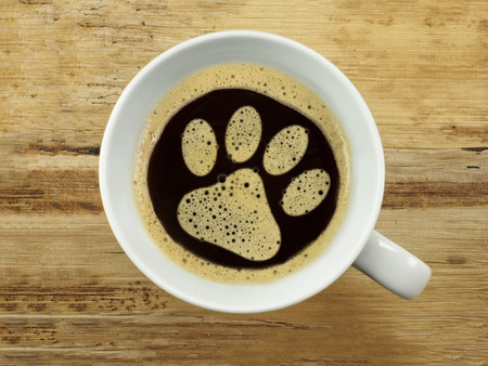 Coffee for the wait at the vet Stock Photo