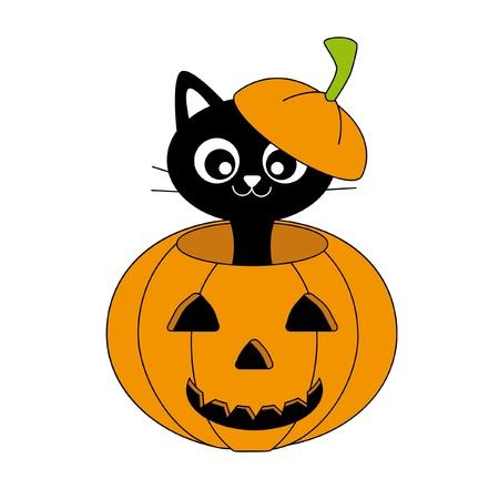 big cat: halloween pumpkin