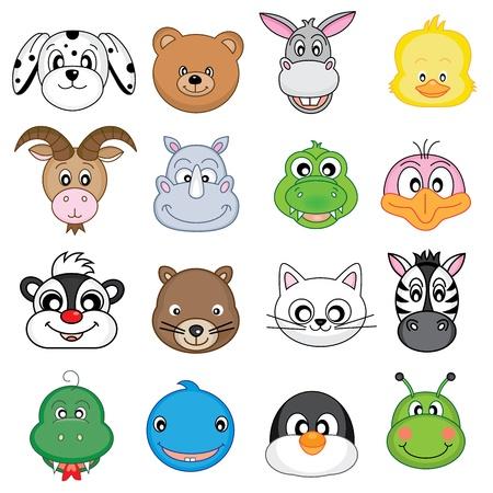 stinktier: Tier-Gesichter