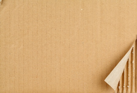 Ripped Grungy Cardboard Background