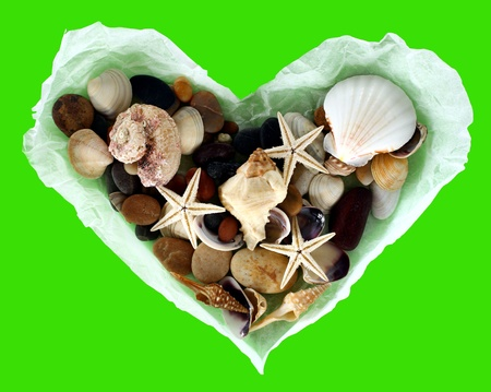 Old paper  heart with shells on a green background photo