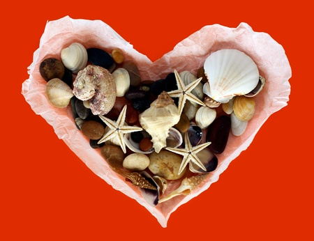 Old paper  heart with shells on a red background photo