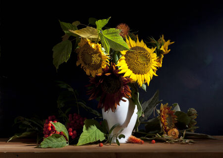Still life with sunflowers and mountain ash on a blue background Stock Photo