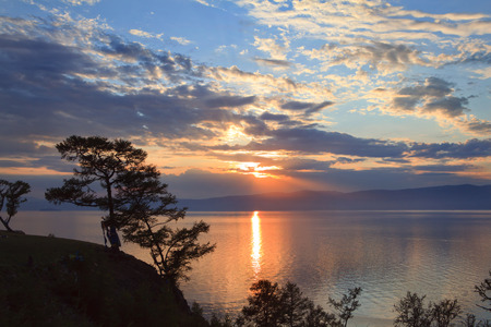 Trees during Sunset on Lake Baikal photo