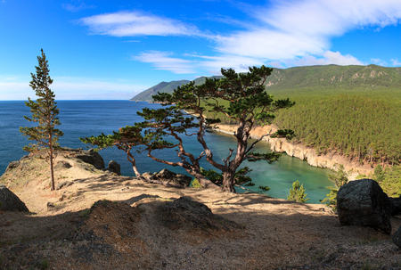 Panorama of Lake Baikal with beautiful pine on a rock