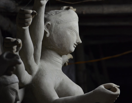 shakti: Side view of goddess durga.