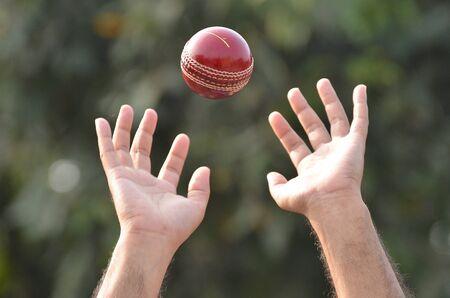 red ball: a cricket player catching a ball.