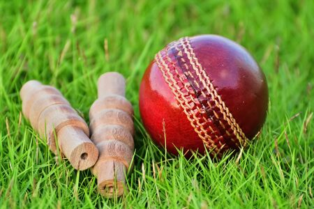 Cricket ball and bails on grass field.