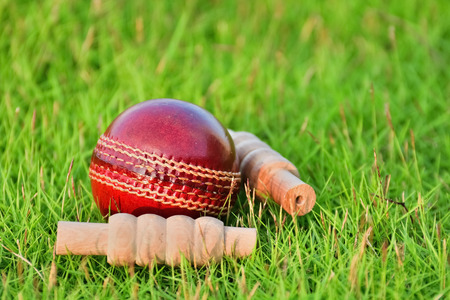 bails: Cricket ball and bails on grass field.