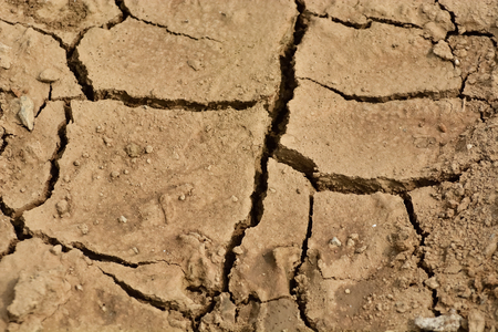 barrenness: During drought, cracked ground, dry soil texture for background.