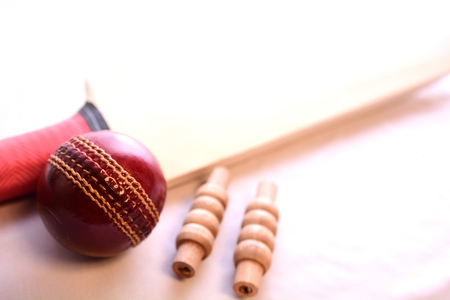 Cricket bat, ball and bails on isolated white background