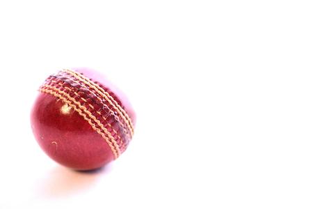cricket ball on isoolated white