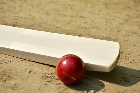 クリケット バット、クリケットのピッチ上でボール