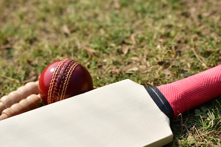 Cricket bat, ball and bails on cricket pitch Stock Photo