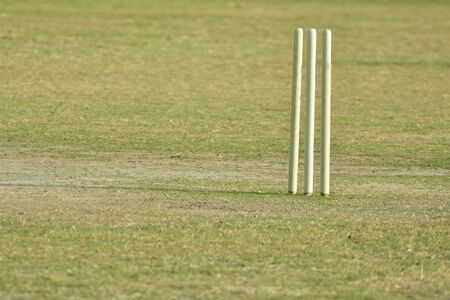 wicket door: Empty cricket pitch to play