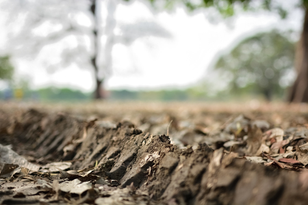traction: wheel track on dirty soil.
