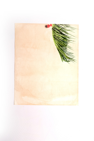 note paper stick on white board with coconut leaf