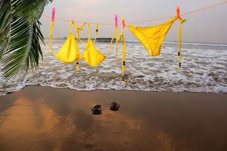 Bikini hanging on beach on sunlight