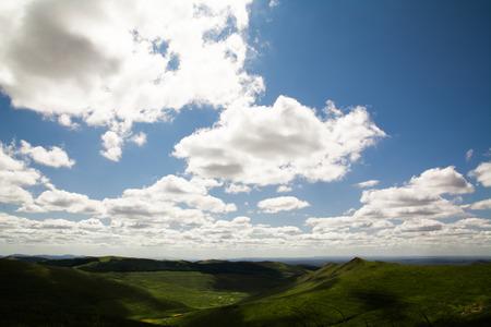 creador: La hierba a lo largo del creador