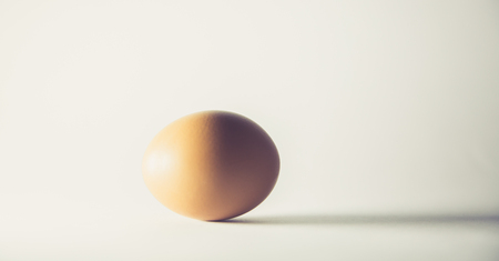 Single brown egg isolated from white background. Concept. Close-up