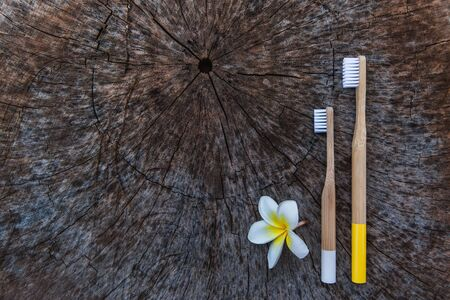 Two white and yellow eco friendly bamboo wooden toothbrushes on wooden background with white yellow flower Plumeria. Copy space, flat lay.