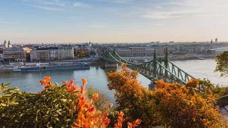 Liberty Bridge Szabadsag Hid at sunrise with beautiful autumn foliage in Budapest, Hungary Banque d'images - 132348355