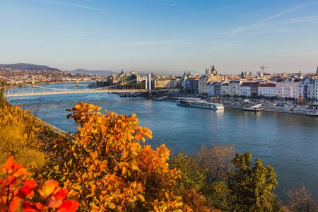 View of Budapest and the river Danube from the Citadella, Hungary at sunrise with beautiful autumn foliage, Hungary Banque d'images - 132350038