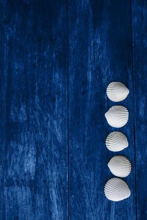 Blue wooden background with white sea shells. Summer concept. Color 2020 版權商用圖片