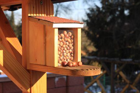 Feeding house for a squirrel