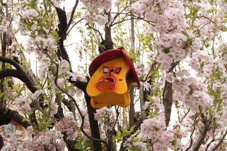 A birdhouse on the tree