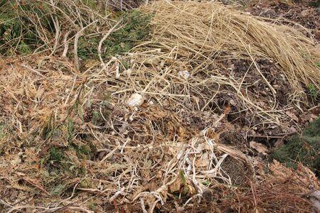 A compost heap in the garden