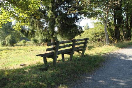 a nice old garden bench