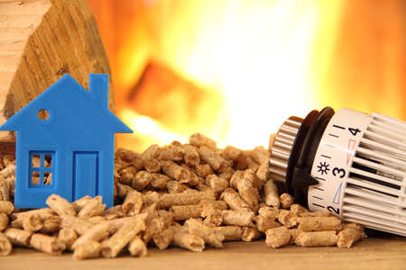 Wood stove with pellets, toy house and a radiator thermostat