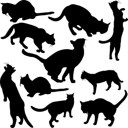 Cats silhouette collection 向量圖像