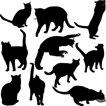 gato negro: Gatos colecci�n silueta - vector 1