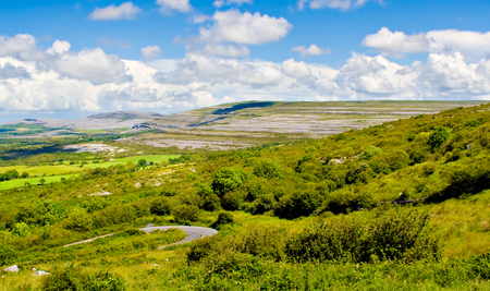 Landscape of County Clare, Ireland. Green fields, trees, and a winding road in foreground and The Burren and sky in the background.