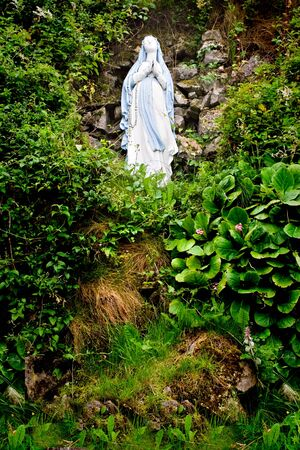 A statue of Virgin Mary on a hill surrounded by foliage Imagens