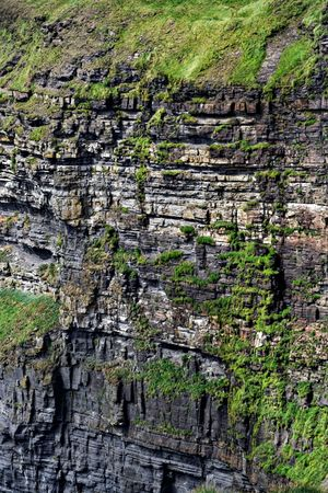 cliff face: Cliff face of the Cliffs of Moher in Ireland