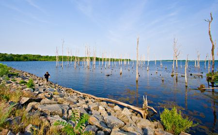 A reservoir with a boy hiking along the shoreline. The setting is beautiful Manasquan Reservoir in New Jersey. Stock Photo - 2231123