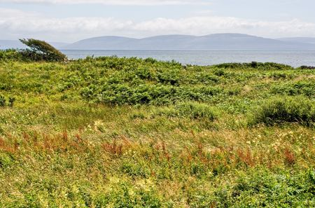burren: A field in the foreground with Galway Bay and the Burren of Ireland in the background Stock Photo