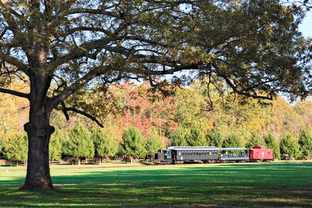 restored: An old, restored train at Allaire Park, New Jersey